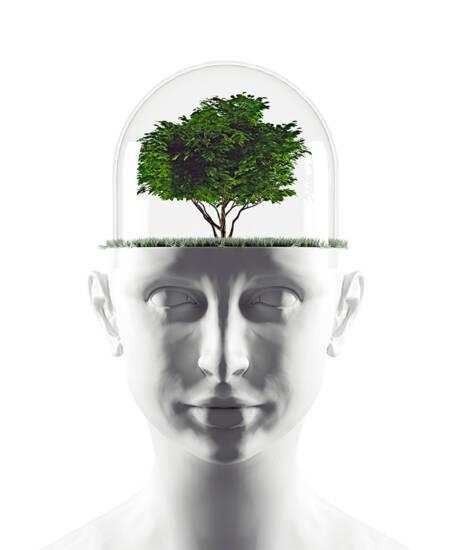 brain-tree5